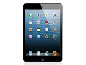 iPad mini Wi-Fi 16GB MF432J
